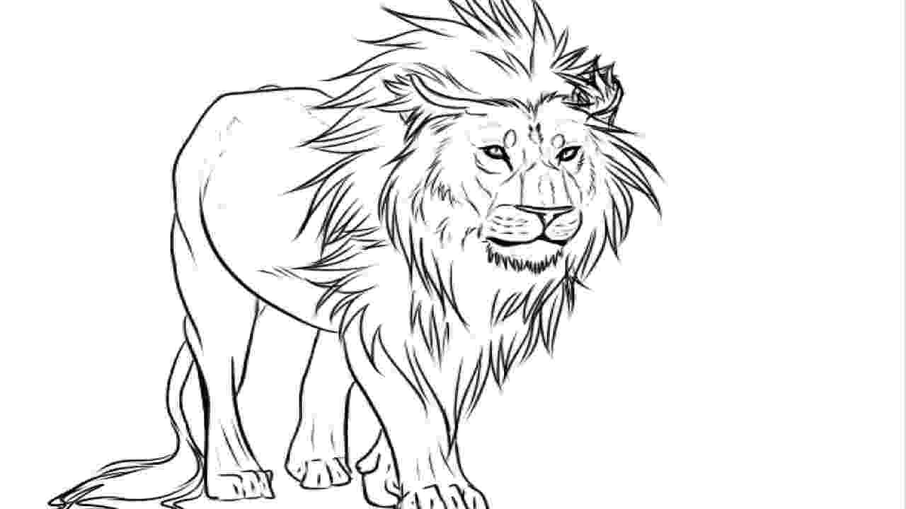 lion pictures for colouring lion coloring pages set 1 treehutin lion for pictures colouring