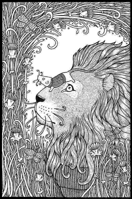 lion trapped in a net the lion and the mouse trapped a lion net in