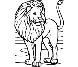 lion trapped in a net the lion and the mouse trapped in net lion a