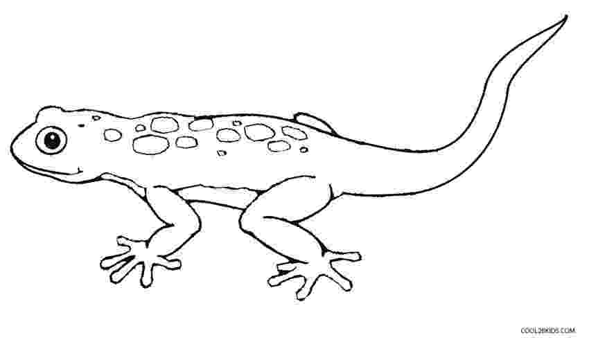 lizard to color free printable lizard coloring pages for kids color lizard to