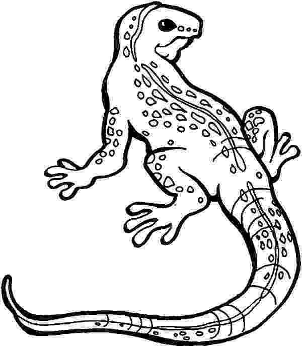 lizard to color free printable lizard coloring pages for kids color lizard to 1 1