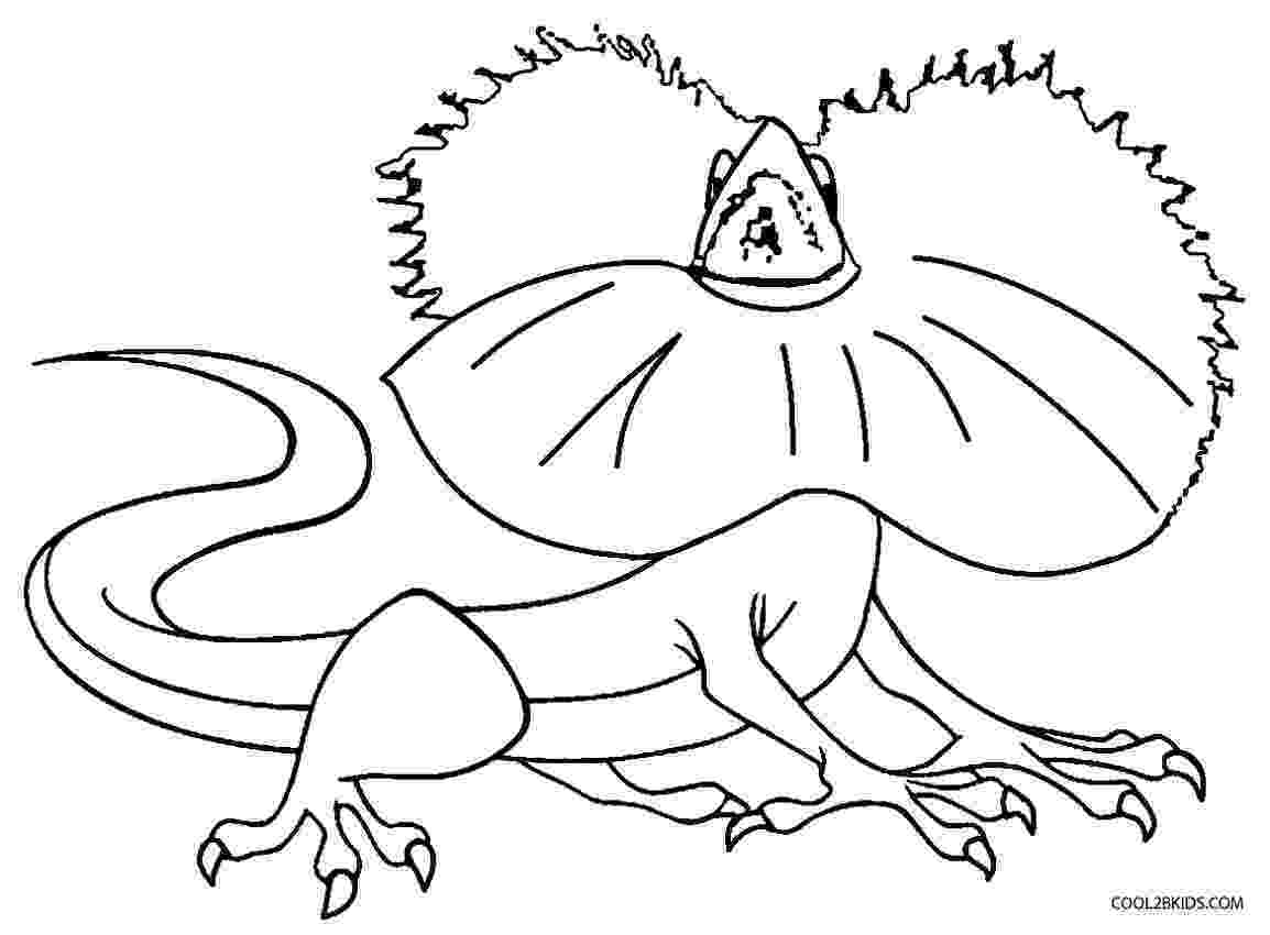 lizard to color free printable lizard coloring pages for kids lizard color to