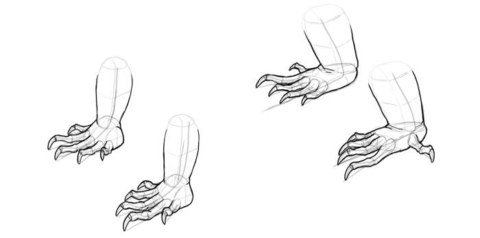 lizard to draw draw a cartoon lizard to draw lizard