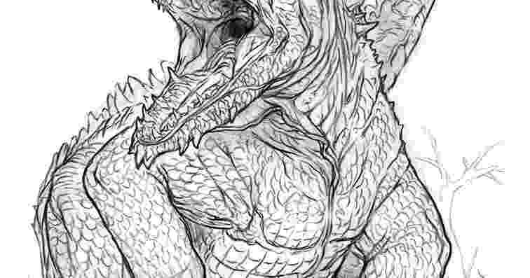 lizard to draw g l to lizard draw