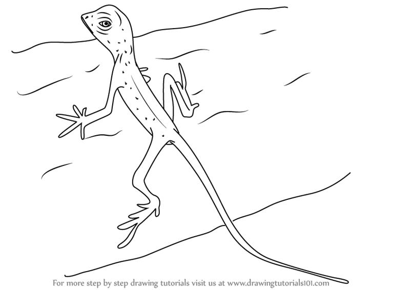 lizard to draw how to draw lizard step by step marvel characters draw lizard to draw