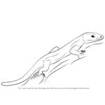 lizard to draw how to draw lizards step by step reptiles animals free draw to lizard
