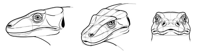lizard to draw sketchbook original how to draw lizards monika zagrobelna draw lizard to