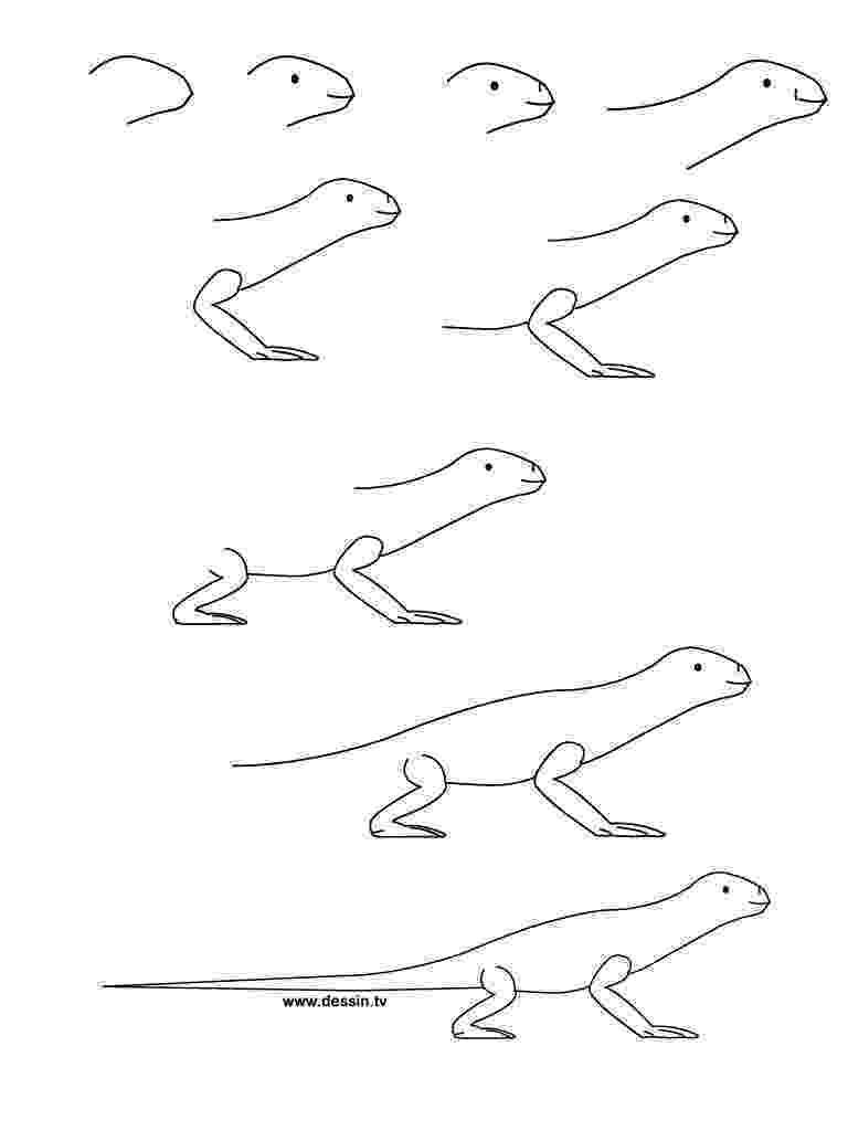 lizard to draw sketchbook original how to draw lizards monika zagrobelna draw lizard to 1 1