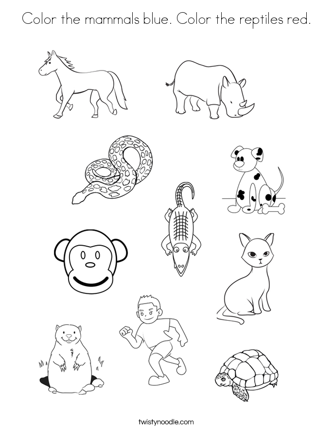 mammals coloring pages color the mammals blue color the reptiles red coloring pages coloring mammals