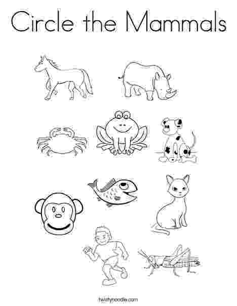 mammals coloring pages free pictures of mammals to print download free clip art mammals coloring pages