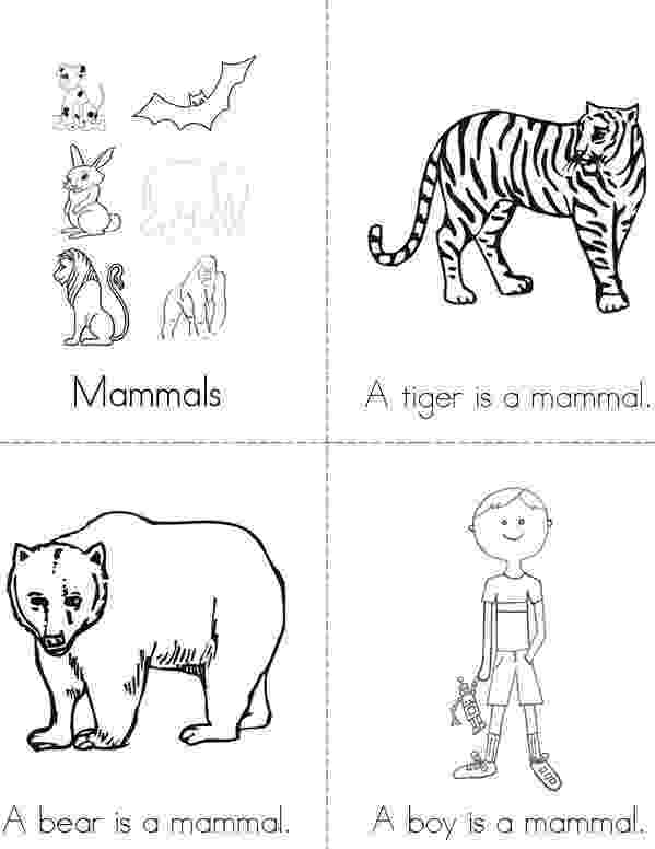 mammals coloring pages free pictures of mammals to print download free clip art pages coloring mammals