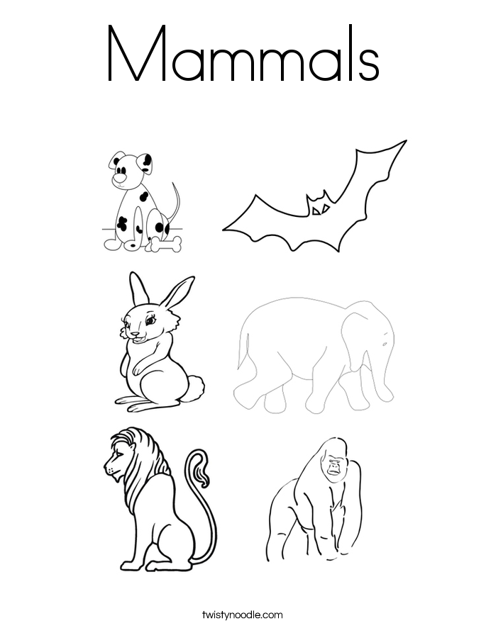 mammals coloring pages mammal coloring pages index exploring nature coloring mammals pages