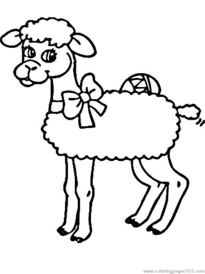 mammals coloring pages pictures of mammals to print clipartsco mammals pages coloring