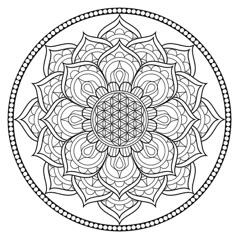 mandala flower mandala design drawing vector download flower mandala