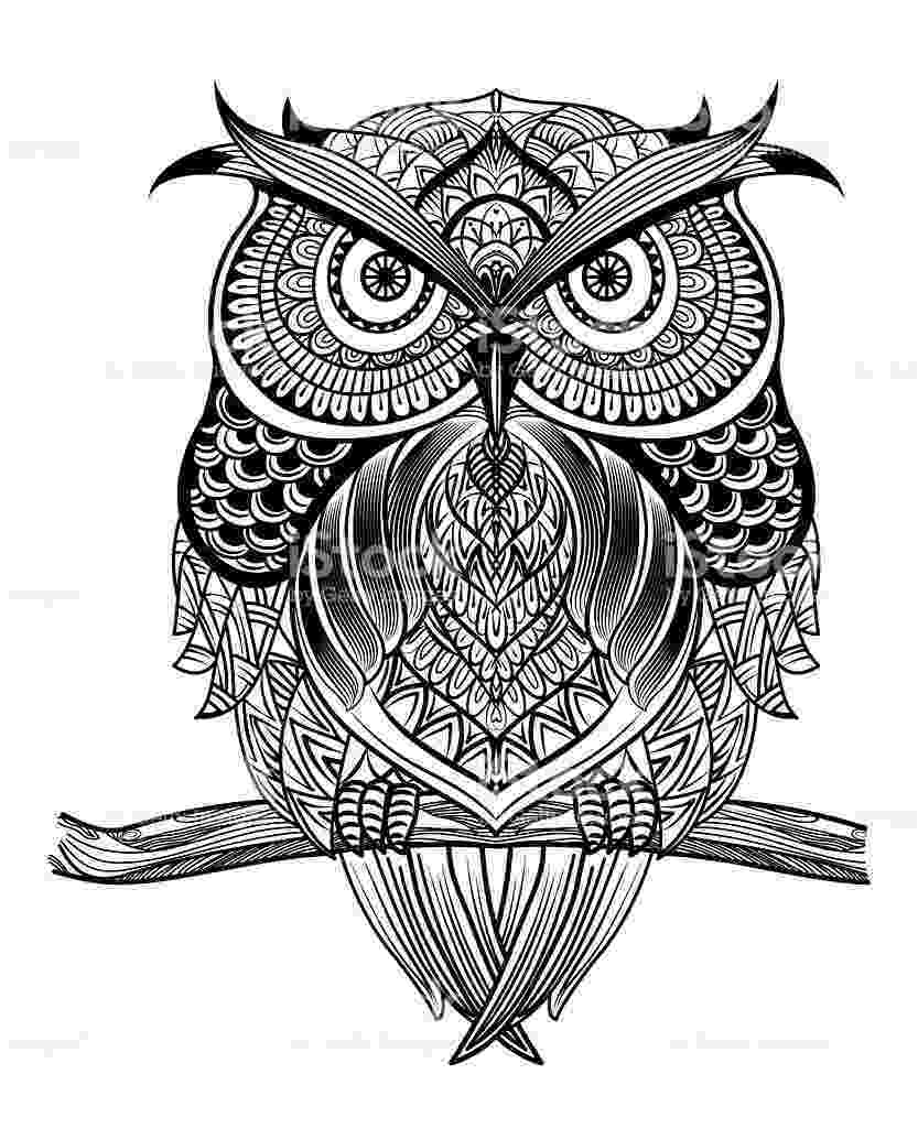 mandala owl 270 best owl coloring pages for adults images on pinterest owl mandala