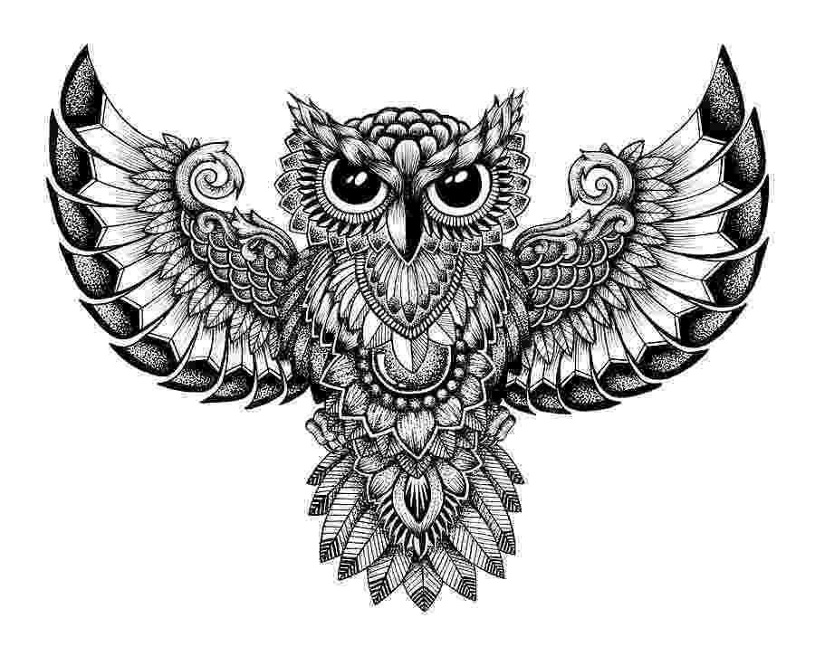 mandala owl moster owl mandala zelij drawings illustration owl mandala
