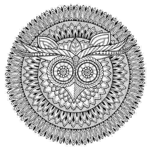 mandala owl owl mandala owl t shirt teepublic mandala owl