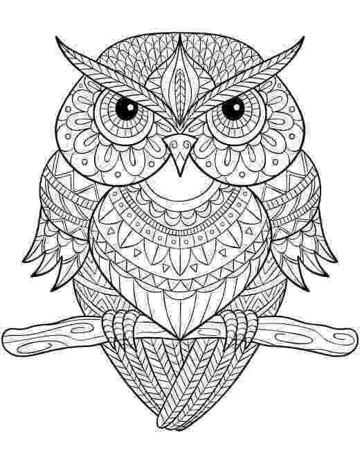 mandala owl quotmandala owlquot art prints by shaseldine redbubble mandala owl