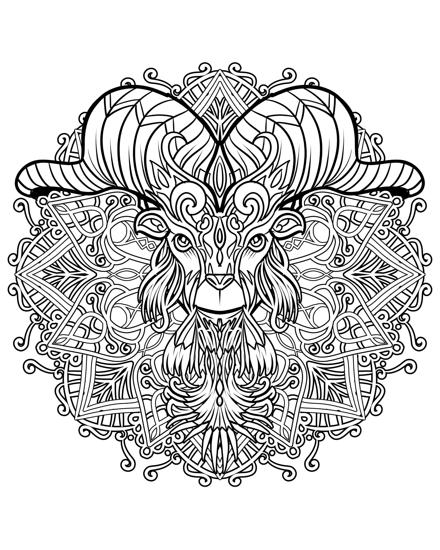 mandalas mandala morphs digital version adult coloring book mandalas