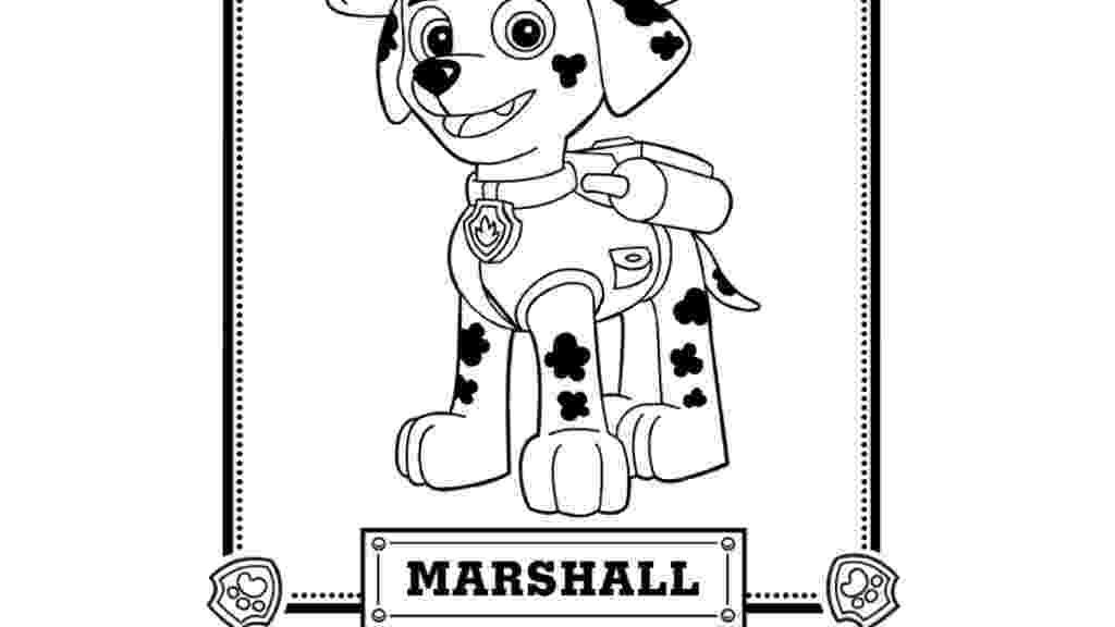 marshall from paw patrol marshall is the male puppy and is one of the supporters in patrol from marshall paw