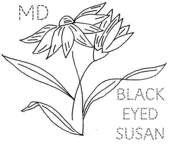 maryland state flower maryland map worksheet coloring page free printable flower state maryland