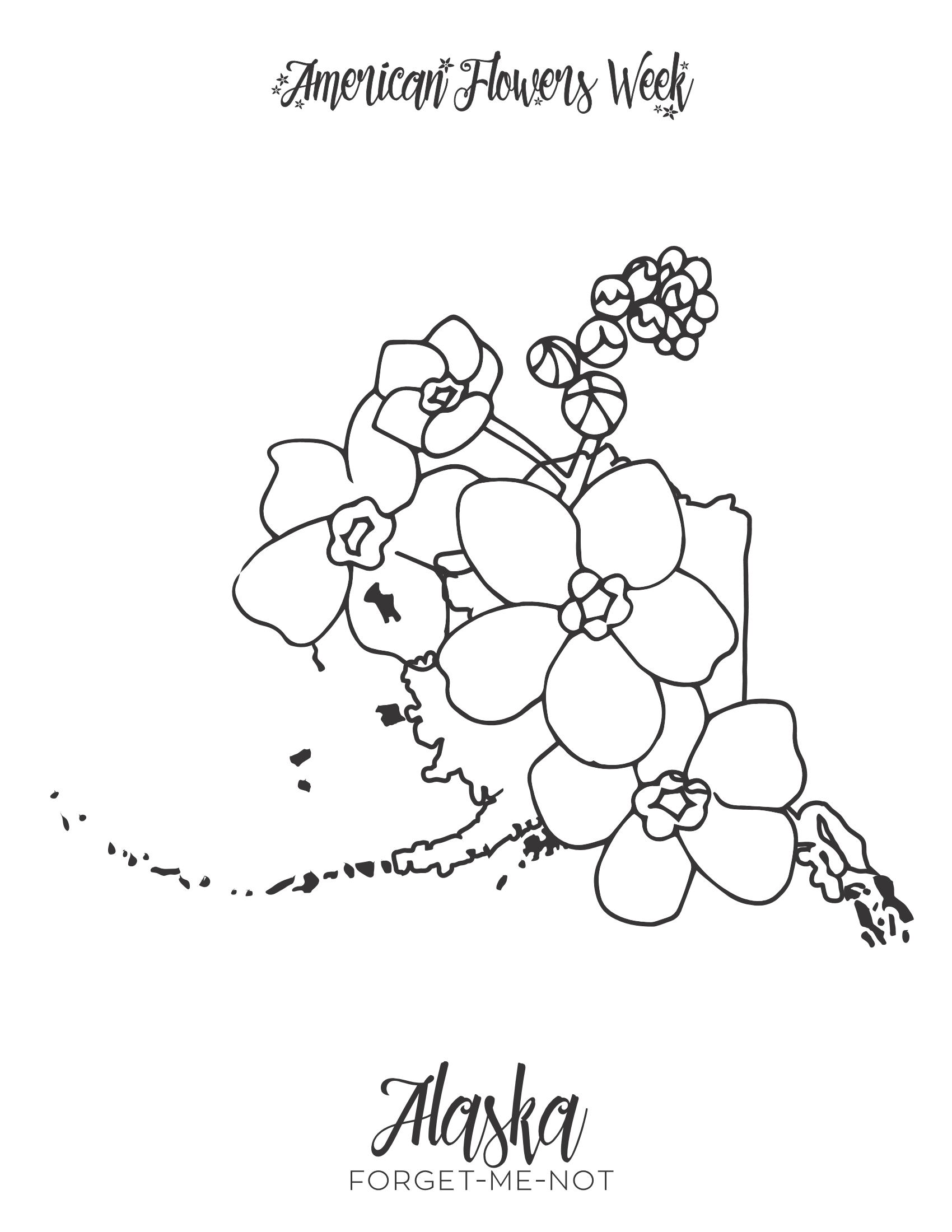 michigan state flower 50 state flowers coloring pages for kids state flower michigan 1 1