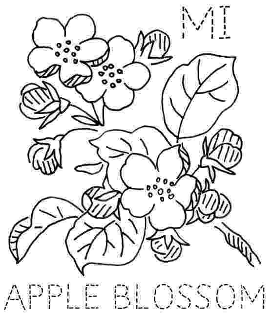 michigan state flower michigan apple blossom embroidery designs embroidery michigan state flower