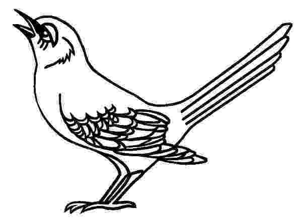 mockingbird coloring page mockingbird coloring download mockingbird coloring for coloring page mockingbird