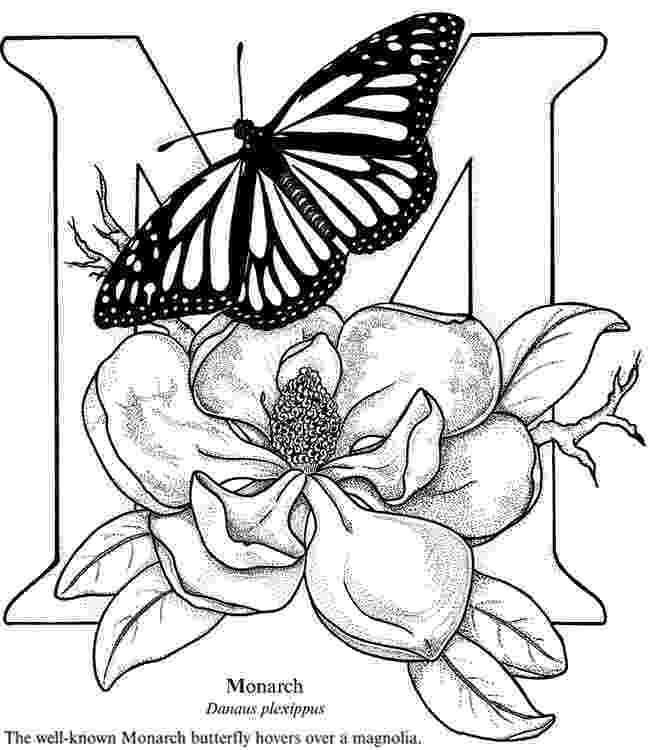 monarch butterfly coloring page expose homelessness m is for monarch butterfly bouquet coloring page butterfly monarch