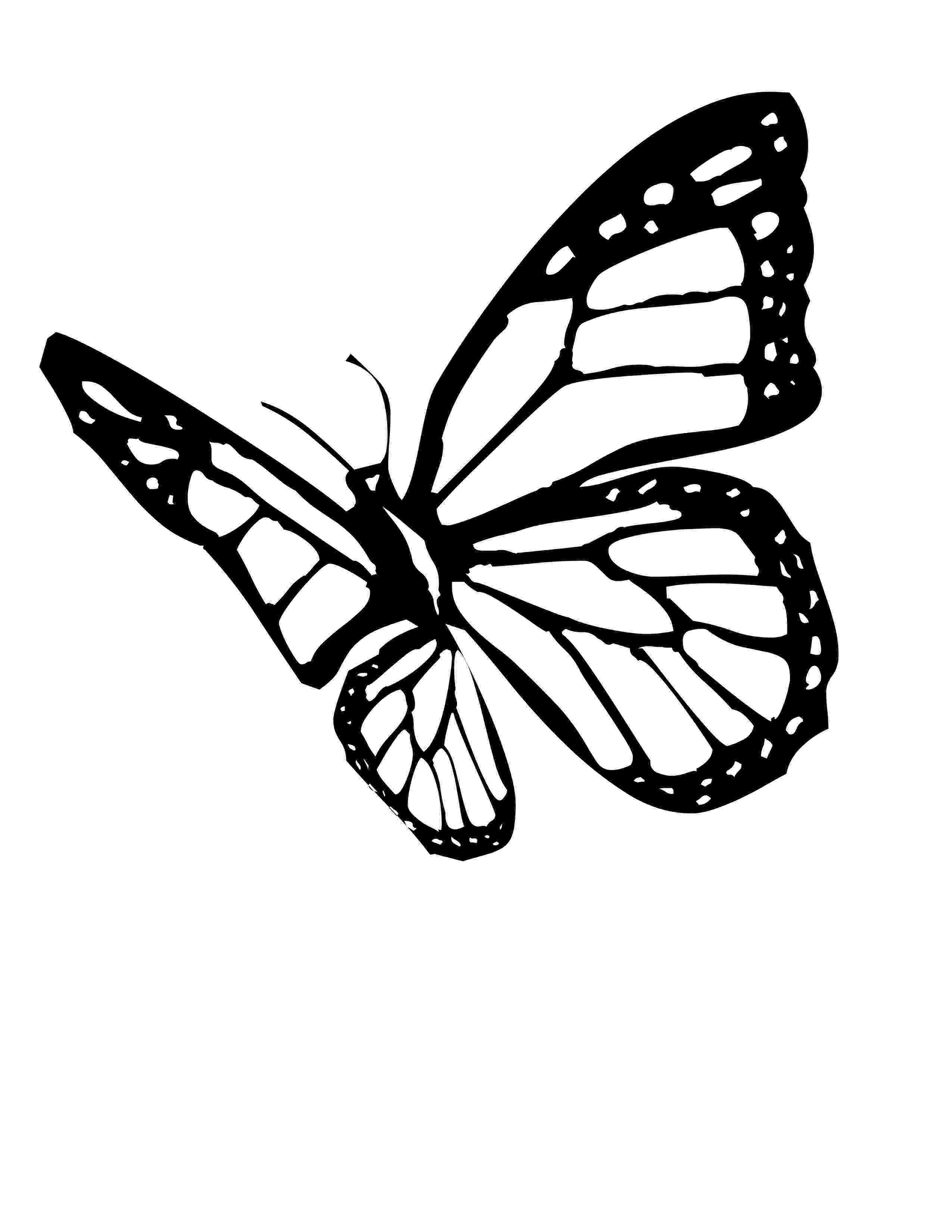 monarch butterfly coloring page free printable butterfly coloring pages for kids coloring butterfly page monarch