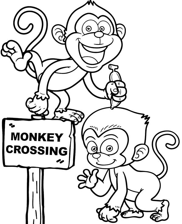 monkey cartoon coloring hilarious monkeys coloring page to print coloring cartoon monkey