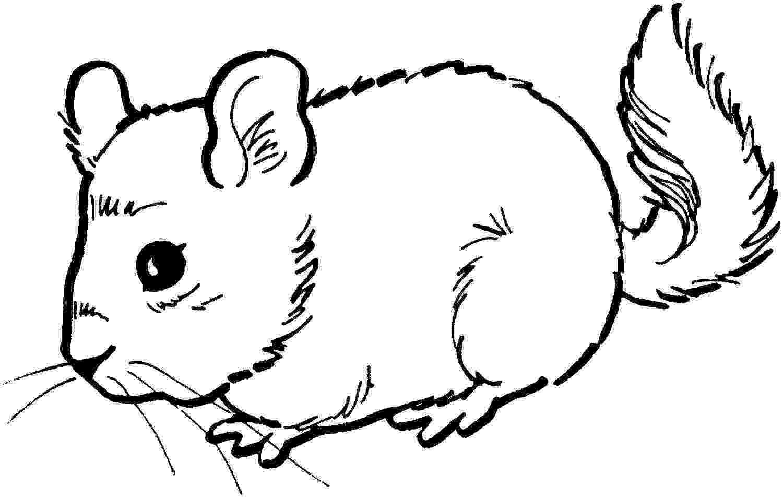 mouse coloring mouse coloring images coloring mouse