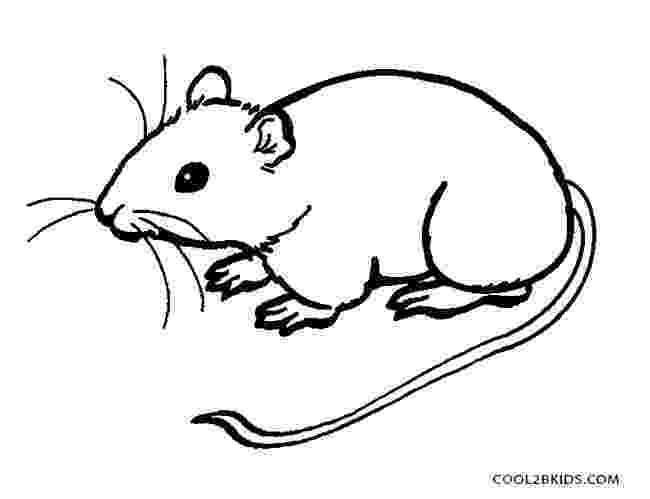 mouse coloring mouse coloring page free printable coloring pages coloring mouse