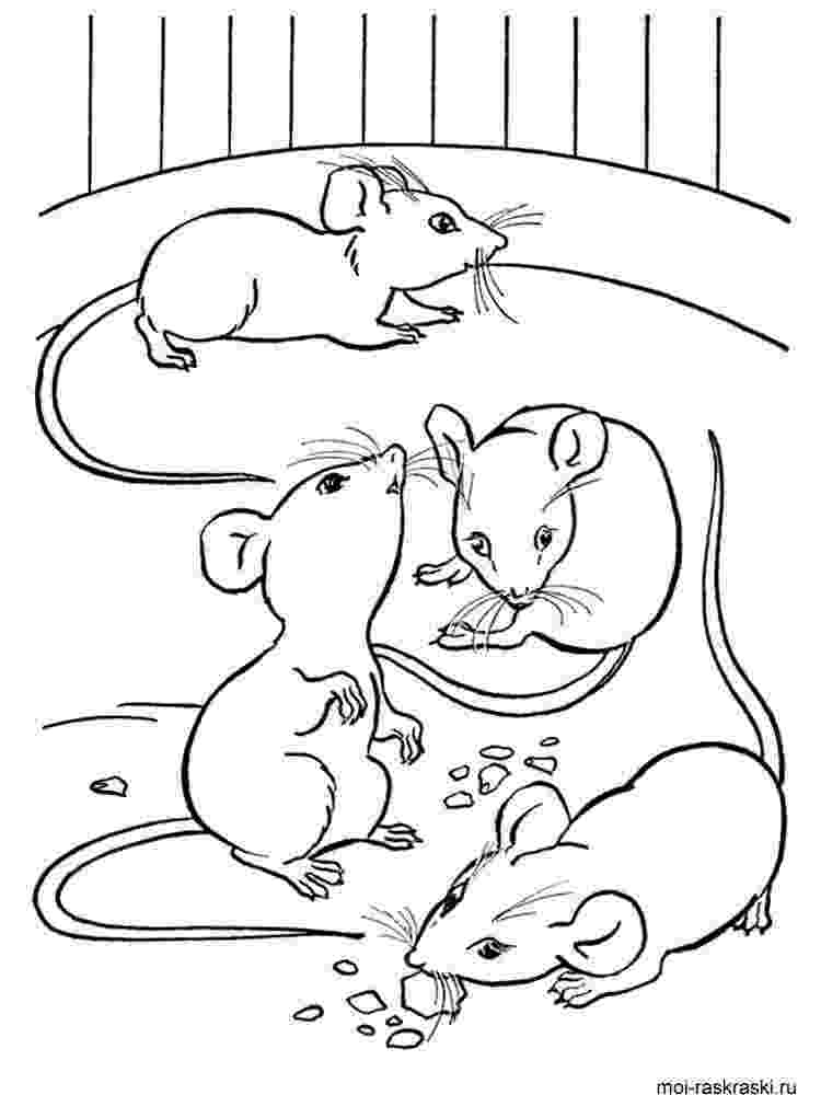 mouse coloring mouse coloring pages download and print mouse coloring pages mouse coloring 1 1