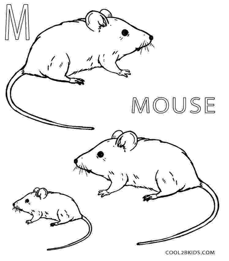 mouse coloring printable mouse coloring pages for kids cool2bkids coloring mouse 1 1