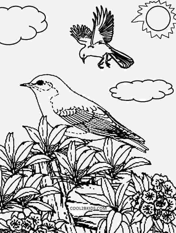 nature colouring pictures free printable nature coloring pages for kids best colouring nature pictures