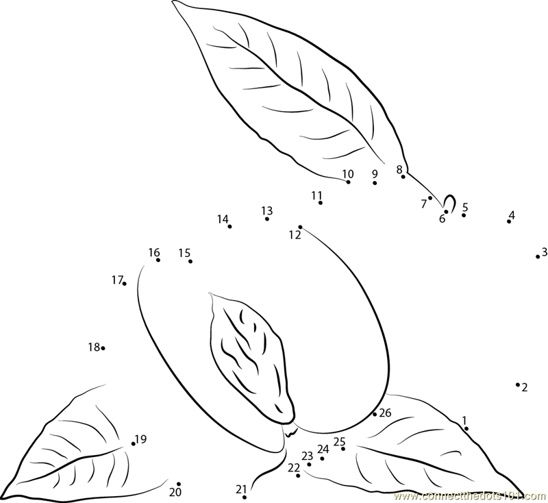nectarine color fruits and vegetables coloring pages page 2 nectarine color