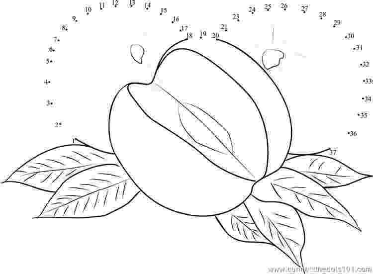 nectarine color gooseberry coloring pages download and print gooseberry nectarine color