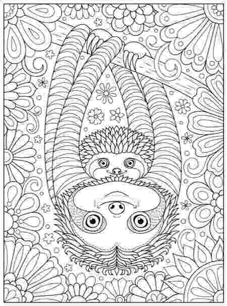 new colouring pages for adults adult coloring pages adults for new colouring pages