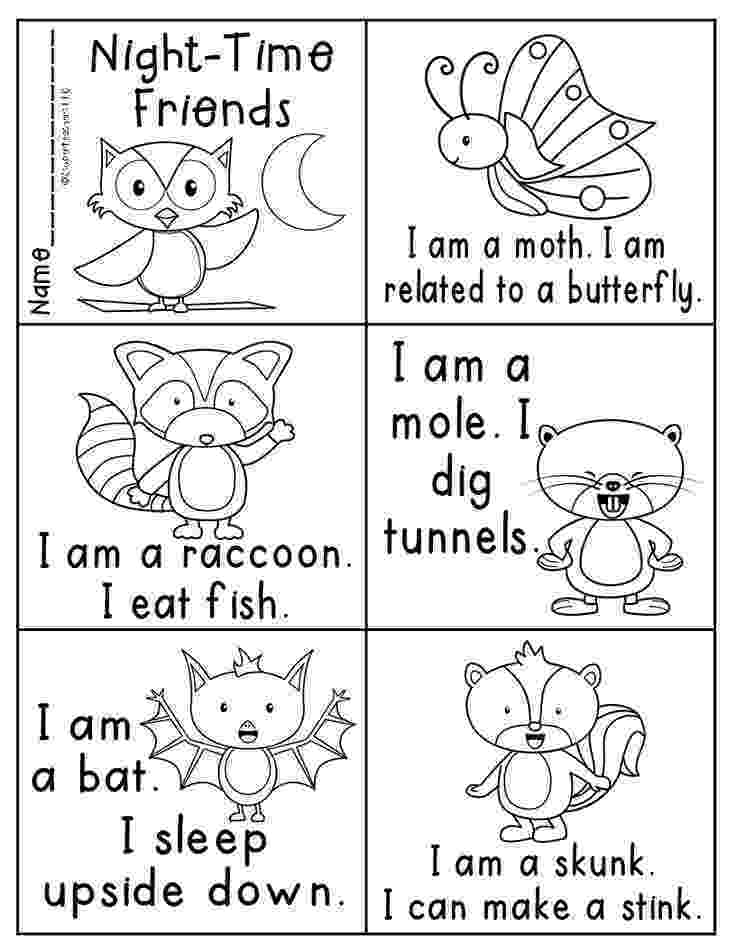 nocturnal animals coloring pages 155 best images about nocturnal animals on pinterest nocturnal pages coloring animals