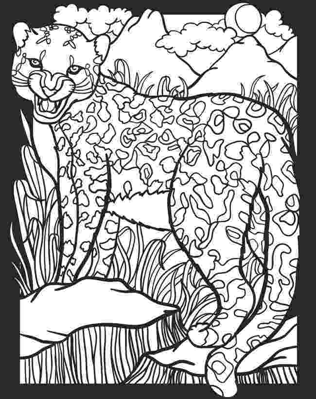 nocturnal animals coloring pages childhood education nocturnal animals coloring pages free coloring pages nocturnal animals