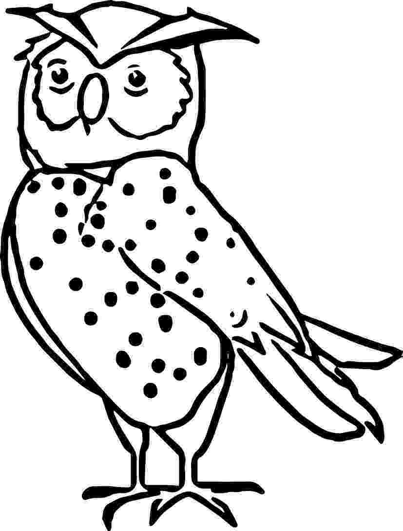 nocturnal animals coloring pages free pictures of nocturnal animals download free clip art coloring nocturnal animals pages