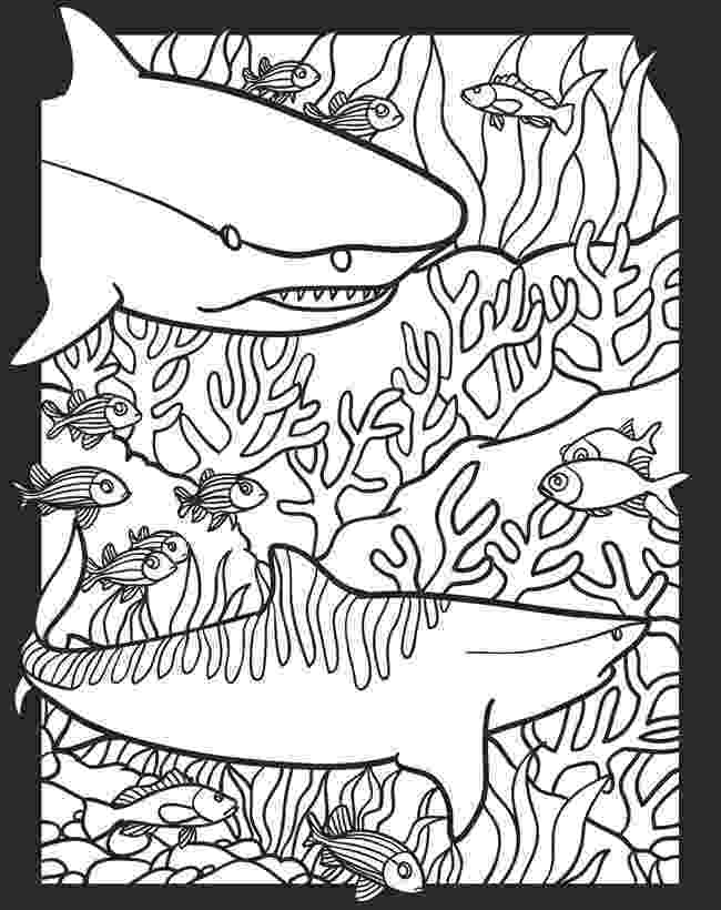 nocturnal animals coloring pages halloween fun learning printables for kids see vanessa animals pages nocturnal coloring