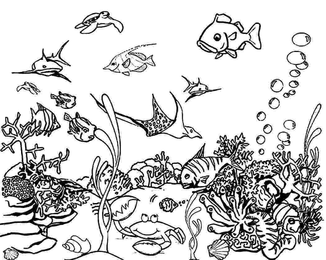 ocean plants coloring pages corals free printable templates coloring pages ocean pages coloring plants
