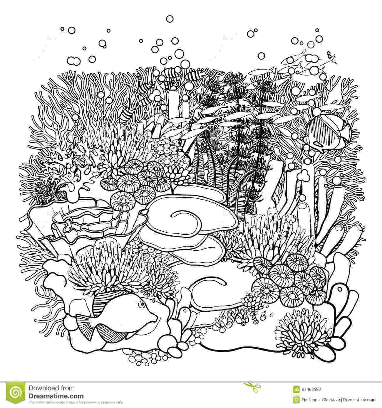 ocean plants coloring pages free coloring pages of sea plants coloring pages plants ocean