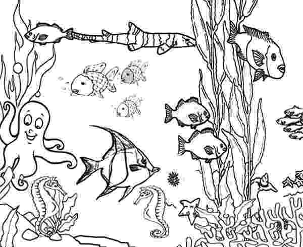 ocean plants coloring pages ocean plants among coral reef fish coloring pages kids pages ocean plants coloring