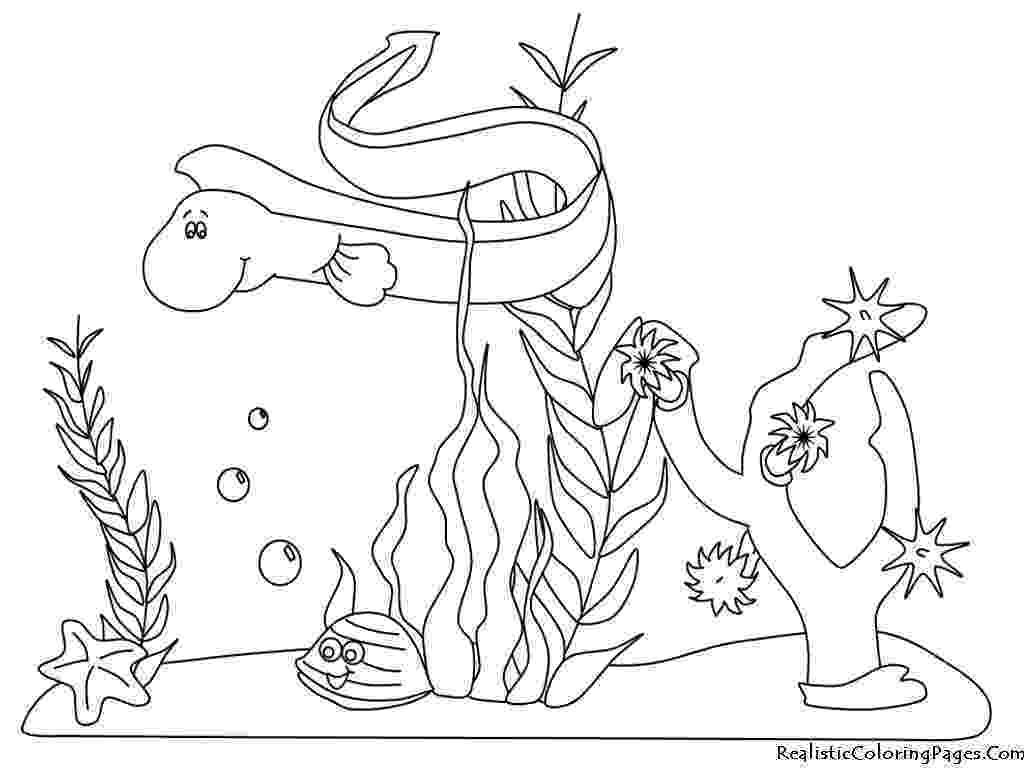 ocean plants coloring pages ocean plants coloring page clip art library coloring plants ocean pages