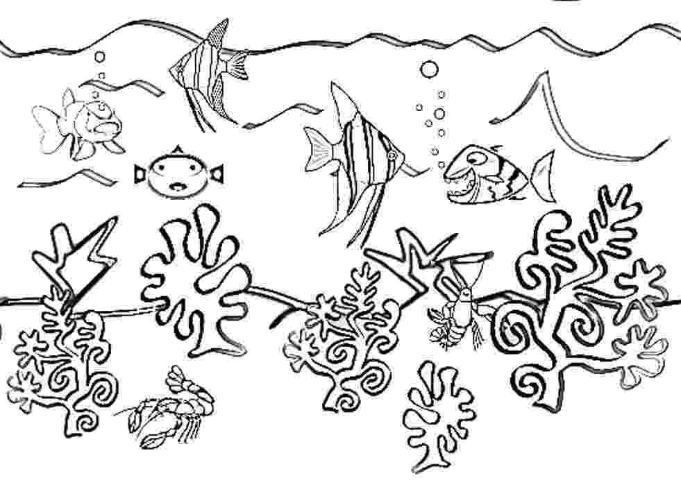 ocean plants coloring pages sea plants coloring pages ocean coloring pages plants 1 1