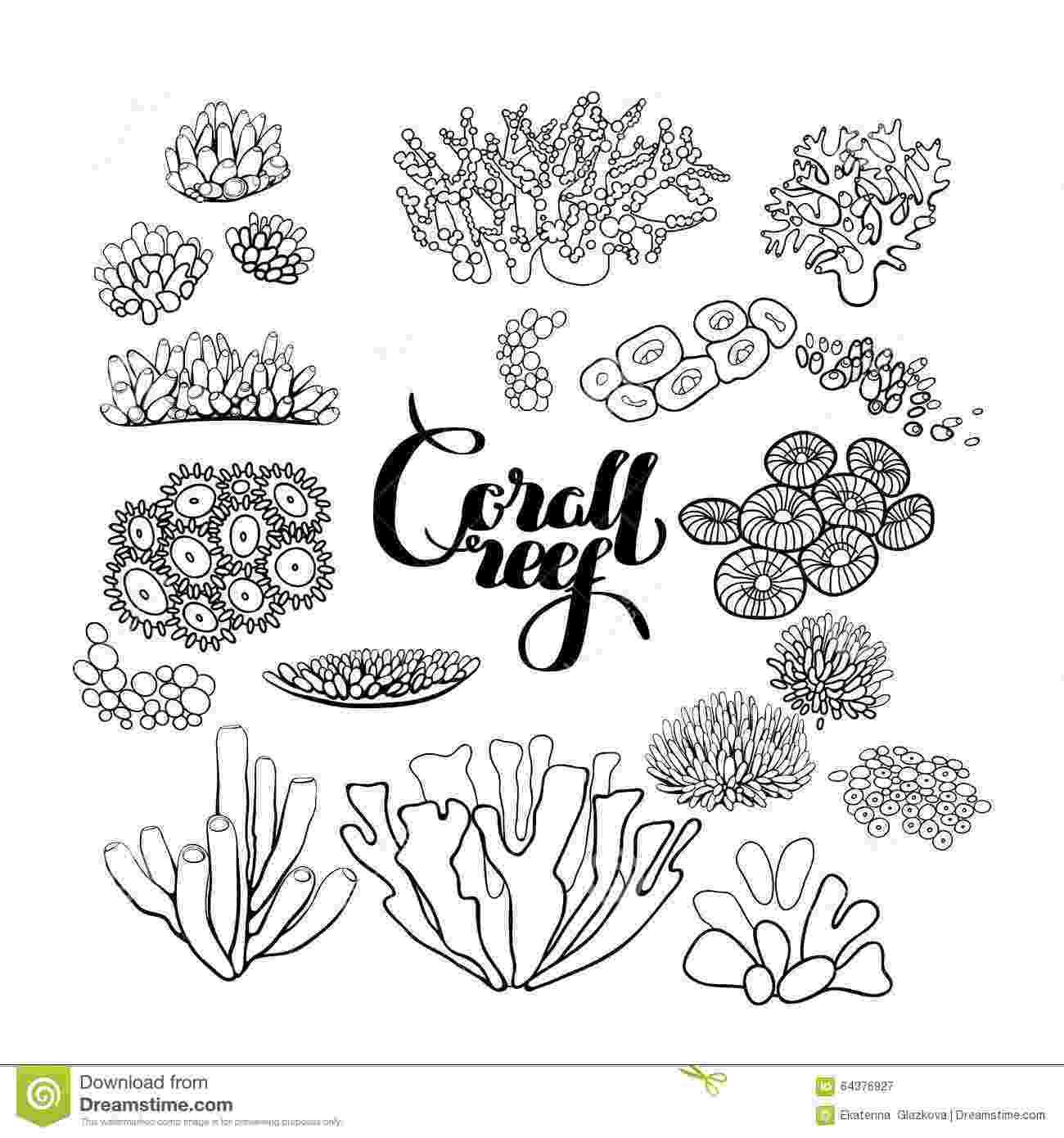 ocean plants coloring pages seaweed coloring pages getcoloringpagescom coloring ocean plants pages