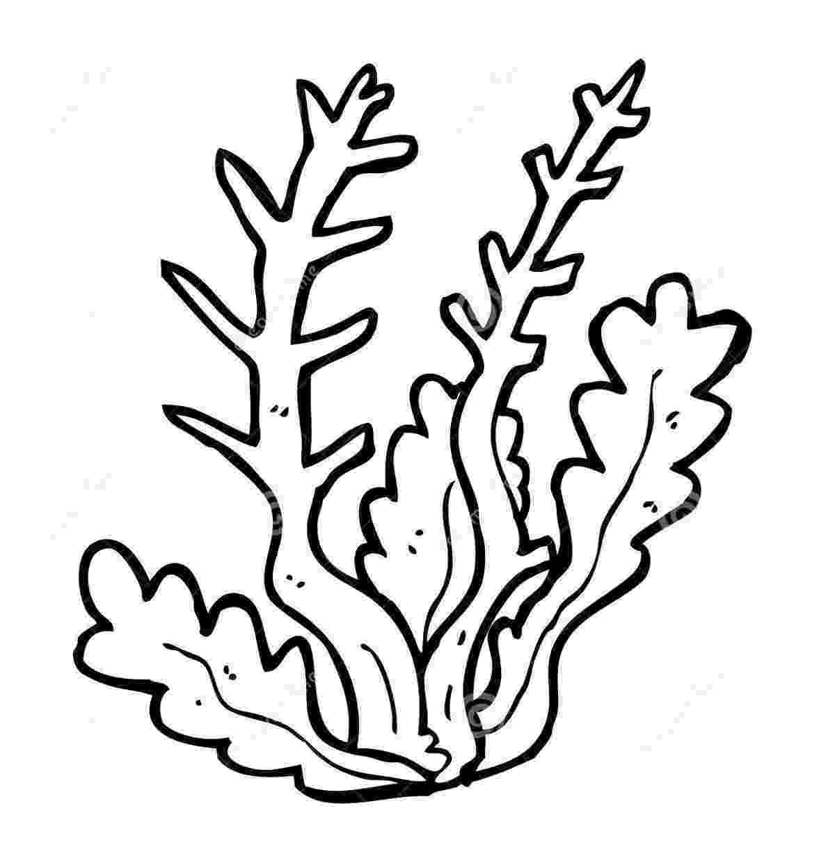 ocean plants coloring pages underwater ocean sea coral bubbles plants printable plants ocean coloring pages